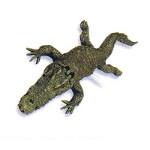 crikey croc