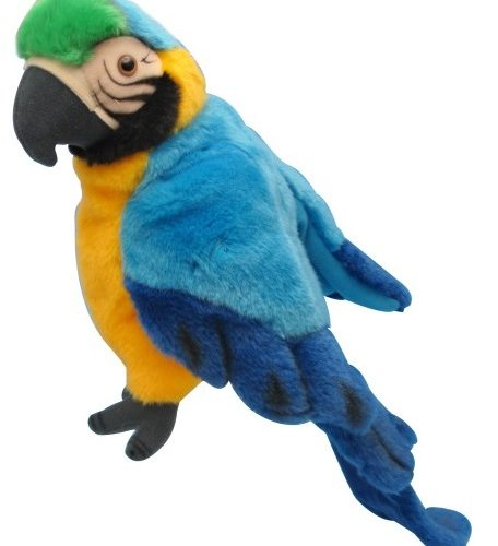 macaw puppet1