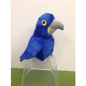 blue_macaw_christchurch