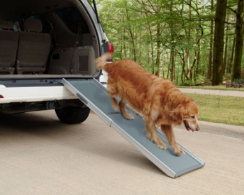 Deluxe Telescopic Pet Ramp